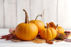 Colorful pumpkins and leaves