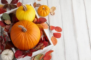 Fall pumpkins and leaves decoration