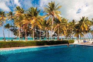 Tropical Dream 9
