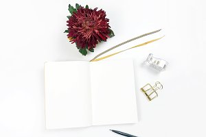 Notebook Flatlay with Chrysanthemum