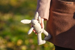 Soft toy rabbit on hands of girl