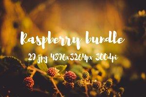Raspberry pack