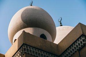 Mosque Top Pigeons.