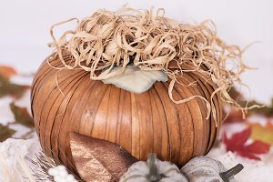 Rustic autumn pumpkin