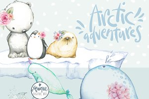 Arctic Animals Clipart Watercolor