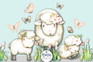 Sheep Lamb Clipart Watercolor