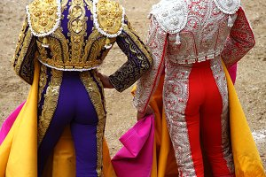 Bullfighters