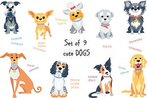 Set of 9 cute dogs
