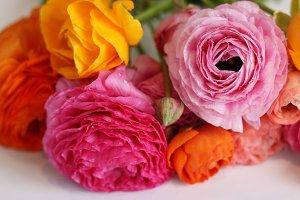 Vibrant Florals
