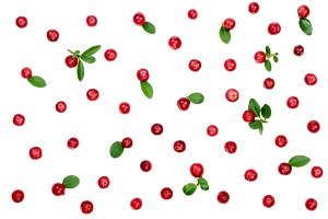 Cranberry with leaves isolated on white background closeup top view. Flat lay pattern