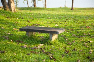 Bench on the lawn.