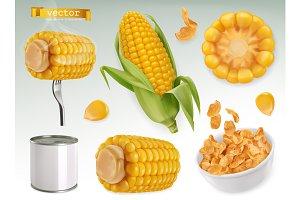 Corn cob, grains, corn flakes.Vector
