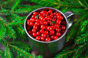 Cowberry, foxberry, cranberry, lingonberry in an aluminum mug on a brown wooden table. Surrounded by fir branches.