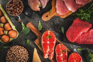 Selection of protein sources food