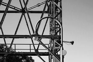 Crane in Black and White