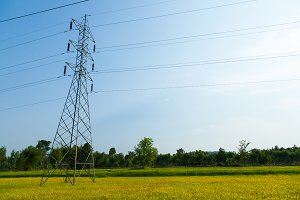high voltage pylons in rice fields.