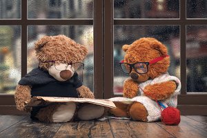 Two toy bears reading and crochet. As an old grandma and grandpa. Window. Rain, water drops on glass