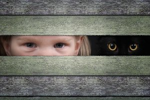 The eyes of a child and cat watching through the crack in the wooden fence