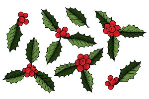 Set of Christmas mistletoe