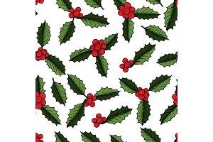Christmas mistletoe plant