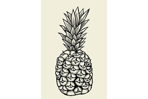 Vector hand drawn pineapple.
