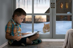 Boy reading a book. Winter outside, snow and icicles. The stray cat looks through a window in the house