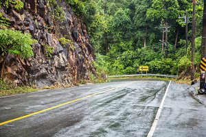 wide road in the tropics