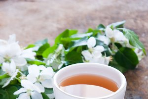 Cup of green tea and blossom