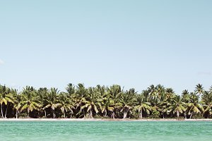 Summer scene with tropical beach and