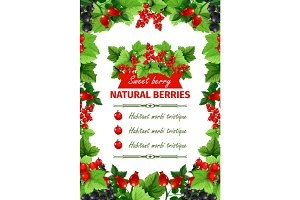 Berry, sweet fruit, natural food banner template