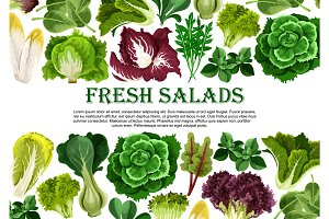 Salad leaf, vegetable greens banner border design