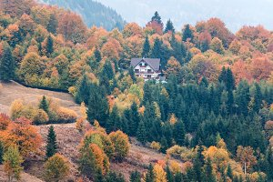 Colorful autumn scenery, house