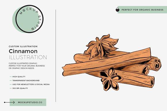 Cinnamon Custom Illustration