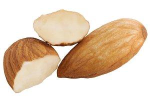 Almond nut half cut isolated