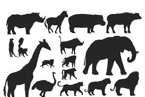 Animals Illustration Vector