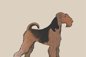 Drawing style of dog vector