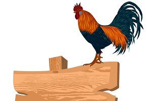 rooster on wooden sign, vector
