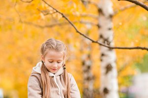 Little girl with in fall at autumn day