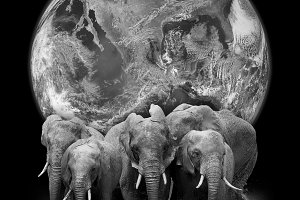Elephants with Earth