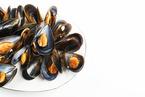 Mussels on white background.
