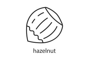 Hazelnut linear icon