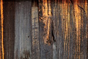 Old aged wood