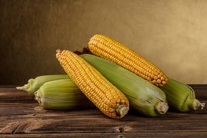 Corn cob