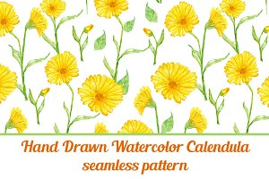 Calendula flower seamless pattern
