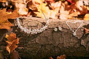 Accessories for the bride against the background of the tree trunk and autumn foliage. Artwork. Autumn wedding concept