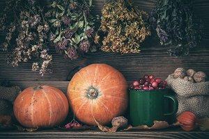 Autumn harvest still life.