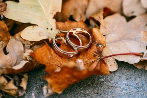 Wedding rings on autumn foliage background