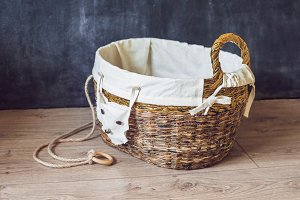 A basket for toys made from old newspapers. zero waste