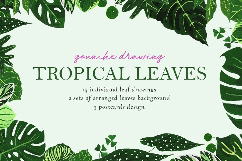 Tropical Leaves Drawing Set Pre Designed Photoshop Graphics Creative Market With this file you will be able to create awesome and unique greeting cards, invitations, logos, posters, wedding designs, scrapbooking design and any type of designs with cute hand drawn tropical leaves. tropical leaves drawing set pre