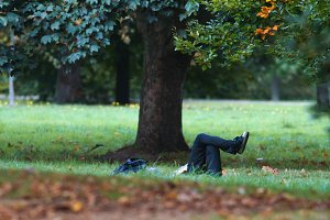 Man have rest in summer park - laying on the grass upping legs